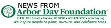 Receive 10 Free Colorado Blue Spruce Trees By Joining the Arbor Day Foundation in August